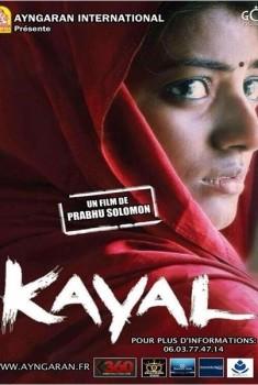 Kayal (2014)