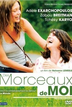 Des Morceaux de Moi (2012)
