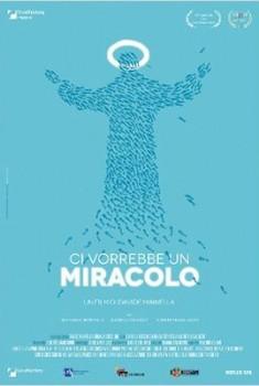 Il me faudrait un miracle (2014)