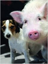 Animalement vôtres (TV) (2012)