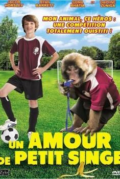 Un amour de petit singe (2014)