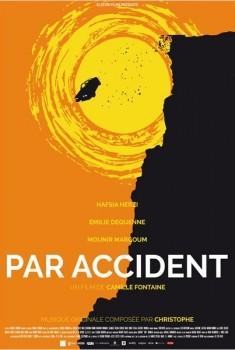 Par accident (2014)