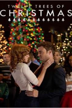 Si Noël m'était conté (2013)