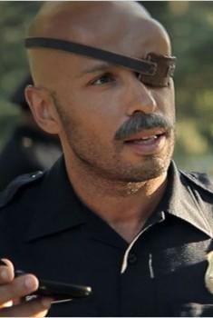 Wrong Cops (Séries TV)